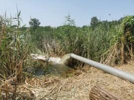 A völgyzárógátas tógazdaságok súlyos gondokkal küzdenek országszerte a tavasz óta tartó egyre nagyobb aszály miatt
